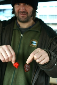 Chris Fowler with the world's hottest chilli, the Carolina Reaper (AKA HP22B) at 2.2million Scovilles!