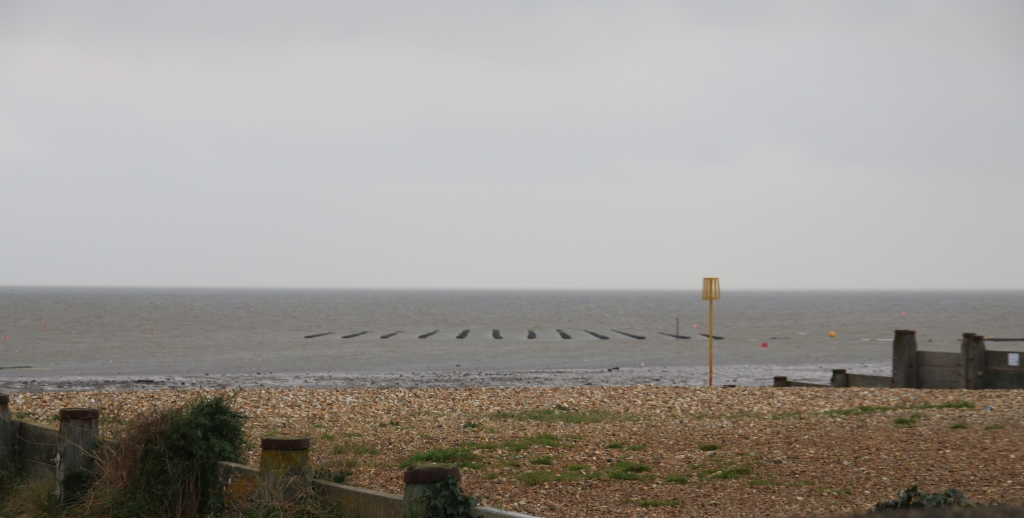 Oyster beds offshore Whitstable