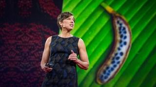 Plant geneticist Pamela Round