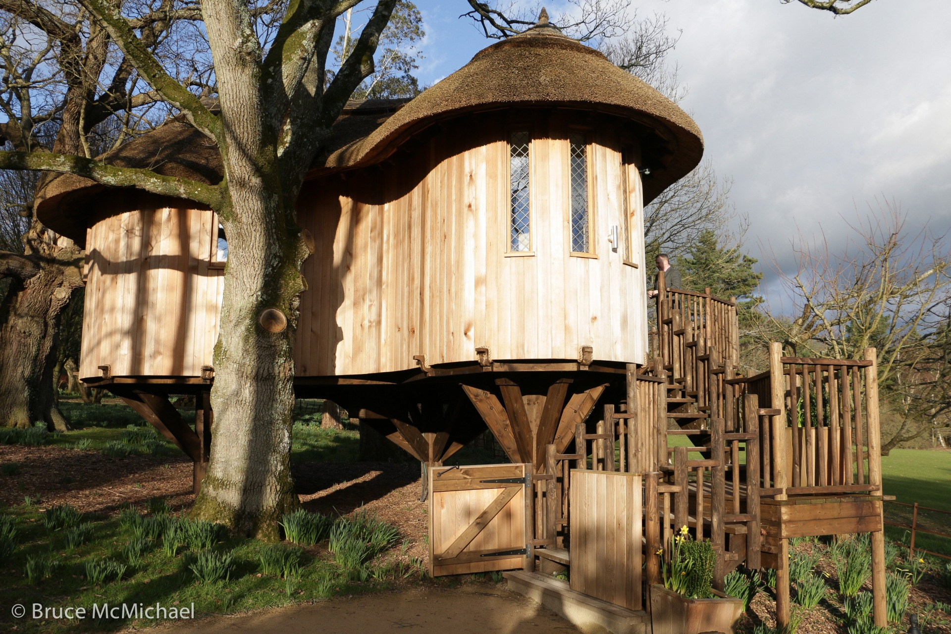Deer Park's spectacular treehouse, ideal for romantics